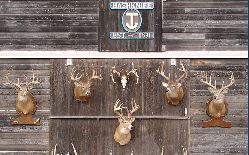 Bucks-on-the-Barn-004